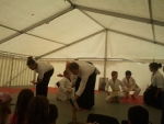 aikido: shiko & Qigong:  jadeteller