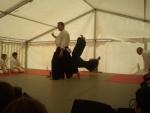 Aikido-Wurf: Tenchi-Nage Himmel & Erde